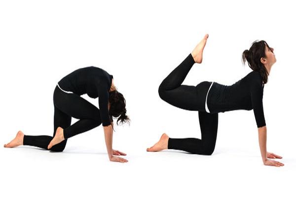 Yoga tư thế con cọp
